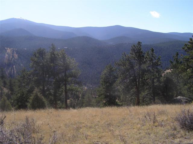 Fool's Gold Road, Idaho Springs, CO 80452 (MLS #2086344) :: 8z Real Estate