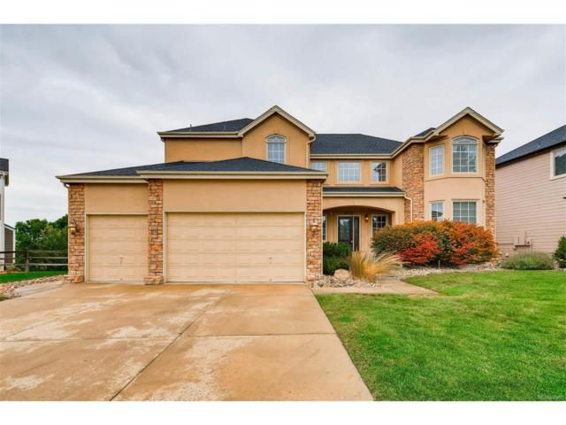 9709 Bay Hill Drive, Lone Tree, CO 80124 (#2094563) :: The Thayer Group