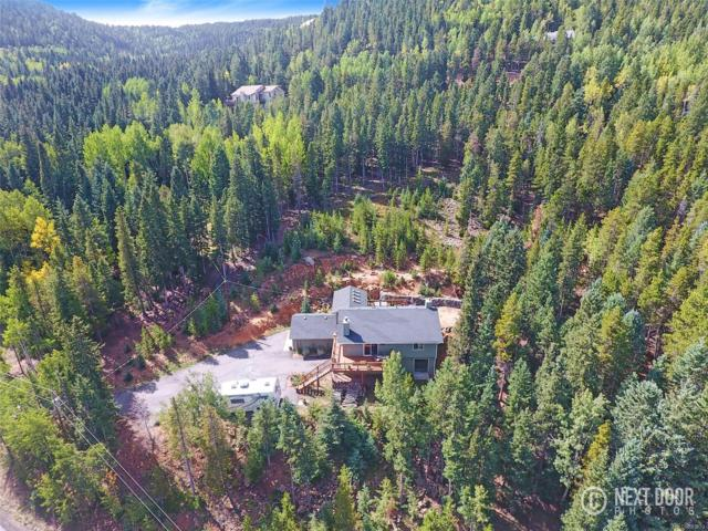 10389 Christopher Drive, Conifer, CO 80433 (#2107029) :: The DeGrood Team