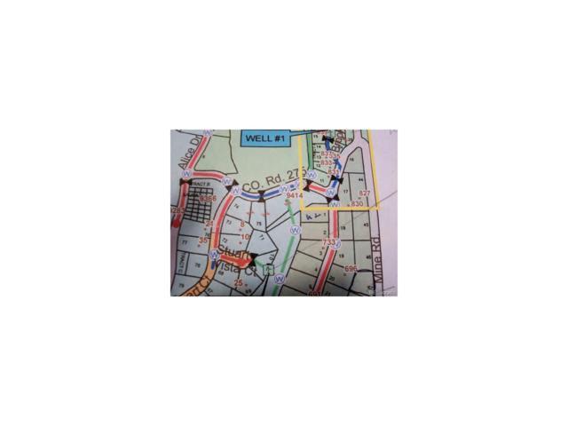Brook Drive, Idaho Springs, CO 80452 (MLS #2107681) :: 8z Real Estate