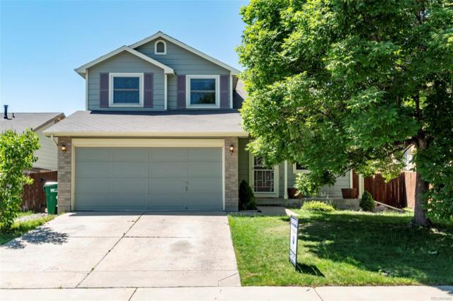 2040 W 131st Place, Westminster, CO 80234 (#2138901) :: The DeGrood Team