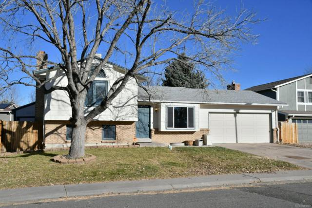 6966 S Wadsworth Court, Littleton, CO 80128 (#2143777) :: House Hunters Colorado