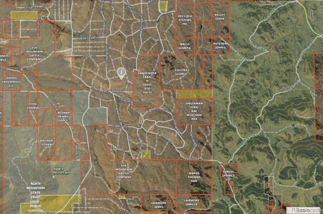 Utse Trail, Hartsel, CO 80449 (#2143880) :: Bring Home Denver with Keller Williams Downtown Realty LLC