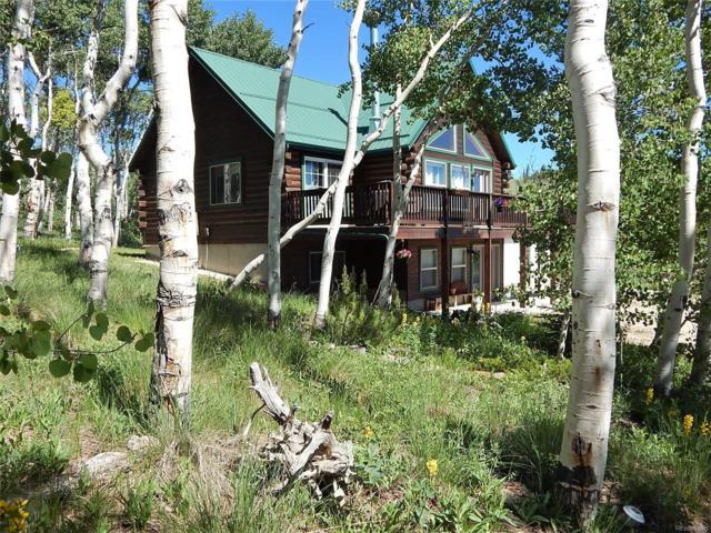 3106 High Creek Road, Fairplay, CO 80440 (#2149109) :: The Heyl Group at Keller Williams
