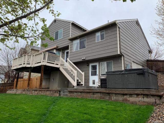 3742 Black Feather Trail, Castle Rock, CO 80104 (#2153856) :: The Healey Group