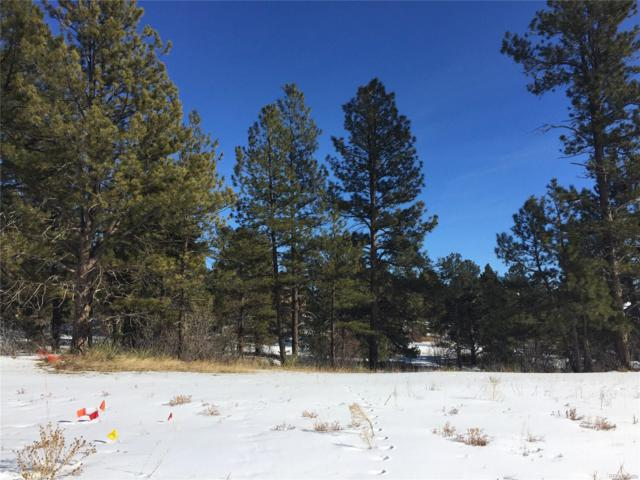 5720 Hidden Oaks Way, Parker, CO 80134 (MLS #2184254) :: 8z Real Estate