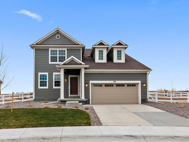 768 Penstemon Drive, Brighton, CO 80640 (#2223192) :: The Heyl Group at Keller Williams