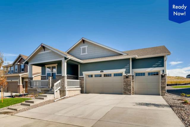 8174 S Vandriver Way, Aurora, CO 80016 (MLS #2264943) :: 8z Real Estate