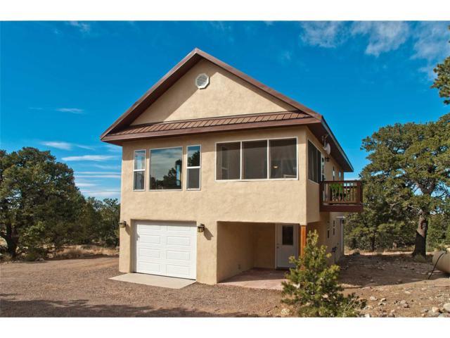 3461 Splendid Way, Crestone, CO 81131 (#2286044) :: Wisdom Real Estate