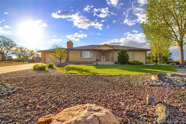 14160 Country Hills Drive, Brighton, CO 80601 (MLS #2289639) :: 8z Real Estate