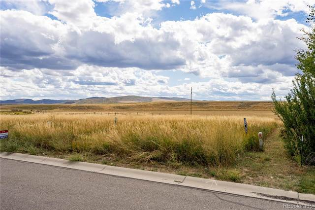874 Dry Creek South Road, Hayden, CO 81639 (#2308867) :: The Brokerage Group