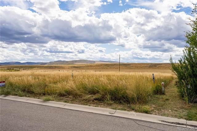 874 Dry Creek South Road, Hayden, CO 81639 (#2308867) :: Wisdom Real Estate