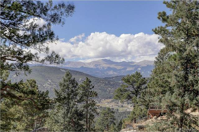 26497 Bell Park Drive, Evergreen, CO 80439 (#2310416) :: The DeGrood Team