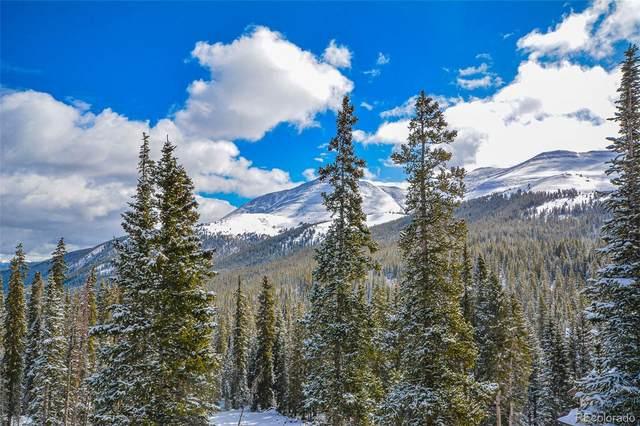 34 Cr 856, Breckenridge, CO 80424 (MLS #2322354) :: Find Colorado