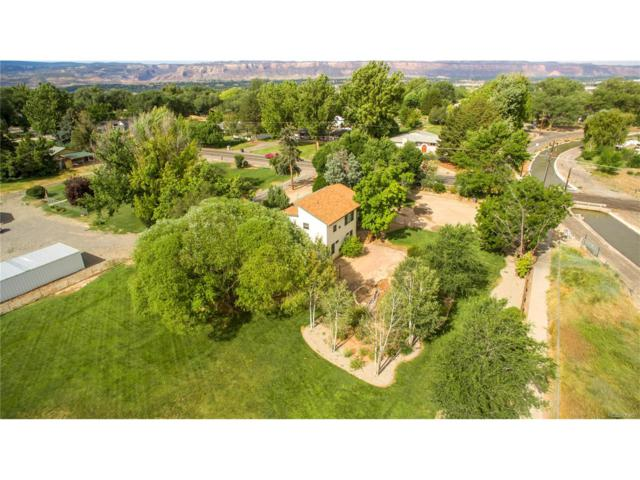 632 26 Roads, Grand Junction, CO 81506 (MLS #2342402) :: 8z Real Estate