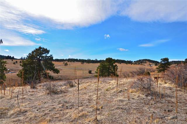 41 Mistletoe Road, Golden, CO 80401 (MLS #2357220) :: 8z Real Estate
