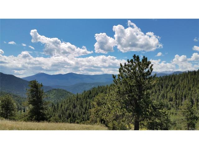 0 York Gulch Road, Idaho Springs, CO 80452 (MLS #2362467) :: 8z Real Estate