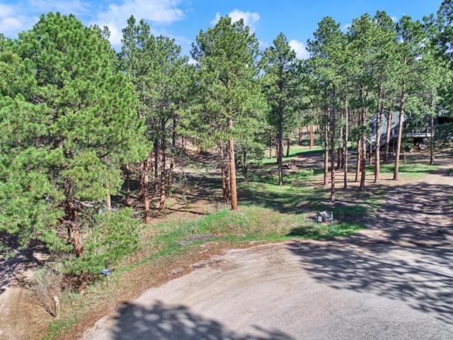 19020 Burnt Leaf Way, Monument, CO 80132 (MLS #2395084) :: 8z Real Estate