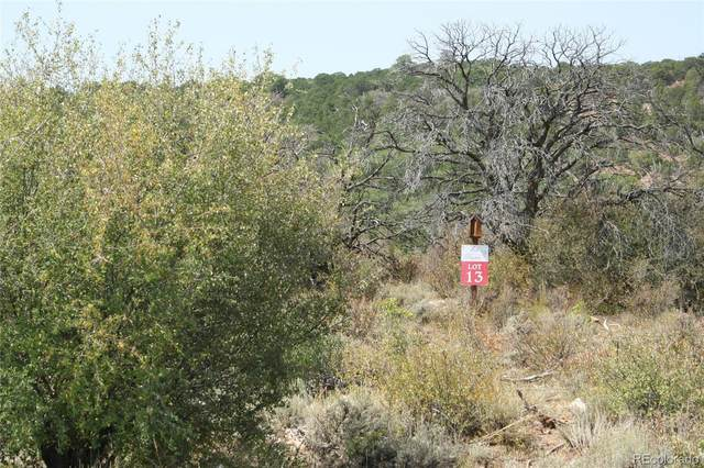 13 Elk Ranch Roads, Glade Park, CO 81523 (#2395529) :: The DeGrood Team