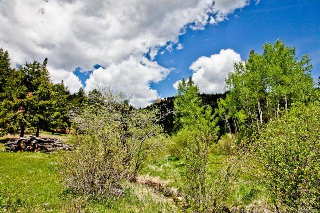 Spirit Horse Trail, Golden, CO 80403 (#2397572) :: 5281 Exclusive Homes Realty