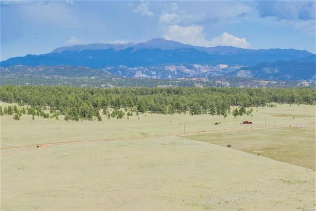 2225 Doe Valley Road, Guffey, CO 80820 (#2398368) :: The DeGrood Team