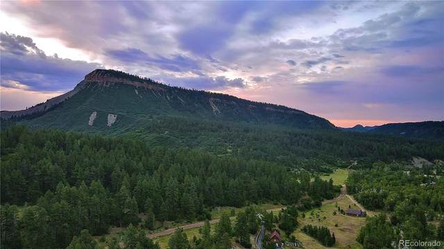 County Road 207, Durango, CO 81301 (#2400285) :: The Gilbert Group