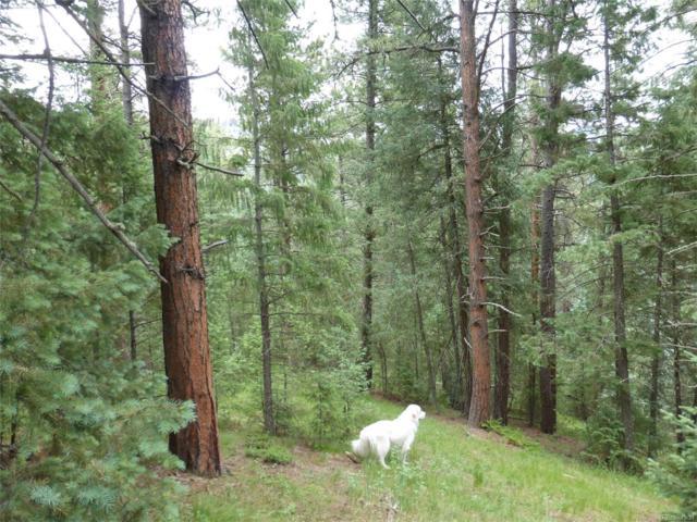 33855 Columbine Circle, Evergreen, CO 80439 (MLS #2409863) :: 8z Real Estate