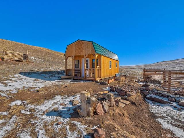 3636 Watonga Drive, Hartsel, CO 80449 (#2428166) :: The Colorado Foothills Team | Berkshire Hathaway Elevated Living Real Estate