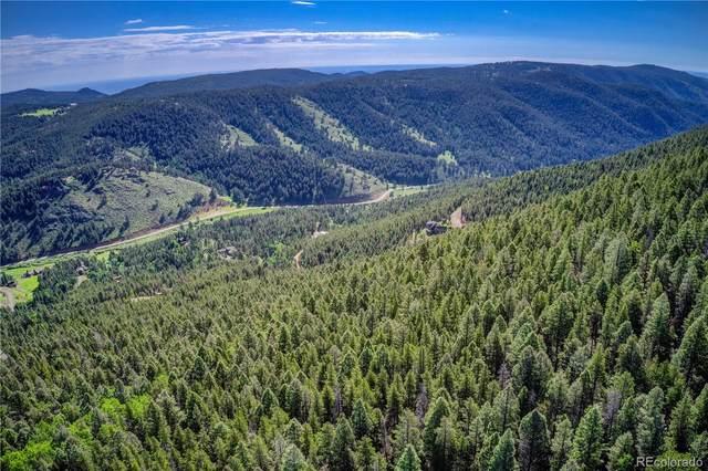 13000 Powhatan Trail, Conifer, CO 80433 (#2430681) :: The HomeSmiths Team - Keller Williams
