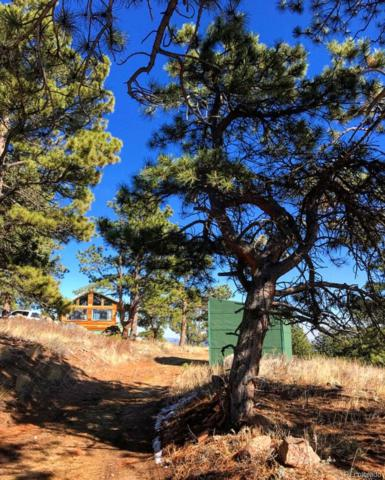 520 Snowshoe Court, Livermore, CO 80536 (MLS #2460344) :: Kittle Real Estate