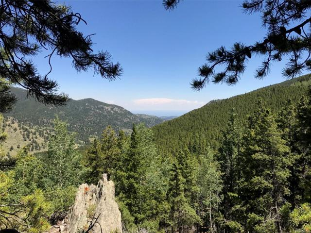 6340 Bear Paw Road, Golden, CO 80403 (#2465596) :: The City and Mountains Group