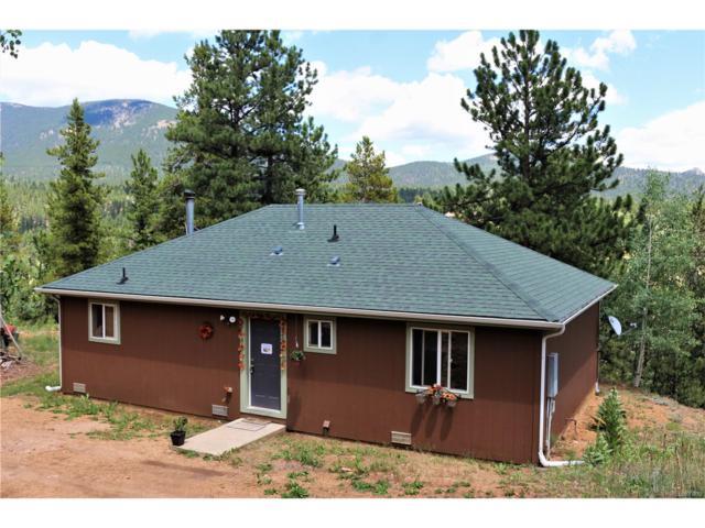 238 Taylor Street, Bailey, CO 80421 (MLS #2469039) :: 8z Real Estate