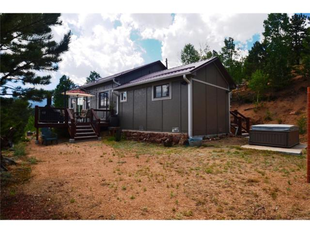 98 Lallie Road, Bailey, CO 80421 (MLS #2492718) :: 8z Real Estate