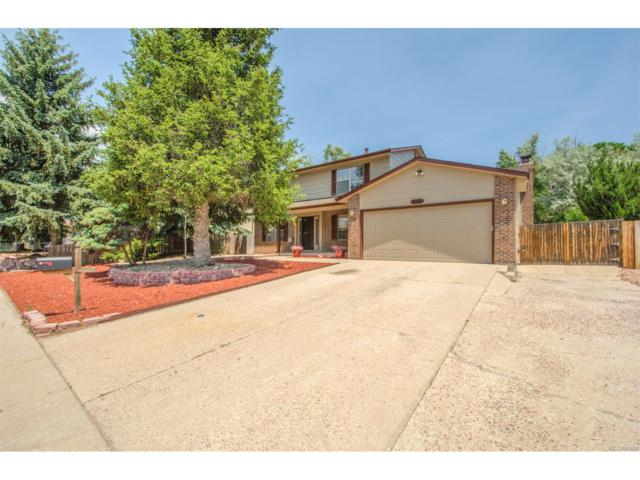 5050 Whip Trail, Colorado Springs, CO 80917 (MLS #2511687) :: 8z Real Estate