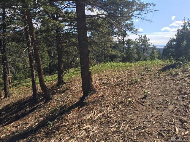 Parcel 2 Hidden Valley Road, Sedalia, CO 80135 (MLS #2518679) :: Bliss Realty Group