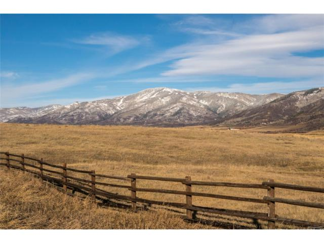 30305 Marshall Ridge, Steamboat Springs, CO 80487 (MLS #2530629) :: 8z Real Estate