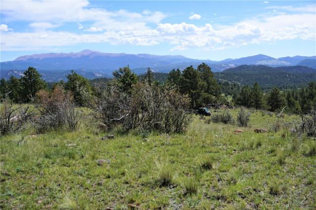 0 County Road 12, Florissant, CO 80816 (#2544853) :: The Heyl Group at Keller Williams