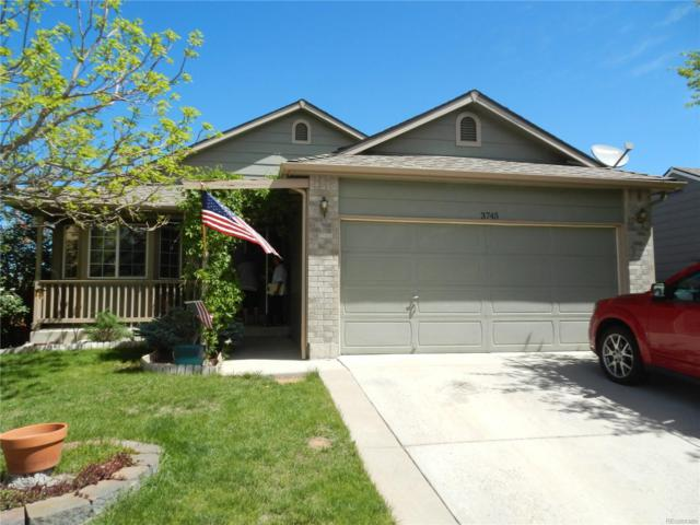 3745 Black Feather Trail, Castle Rock, CO 80104 (#2563016) :: Bring Home Denver