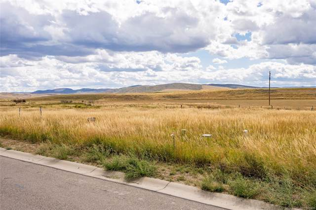 878 Dry Creek South Road, Hayden, CO 81639 (#2564811) :: The DeGrood Team