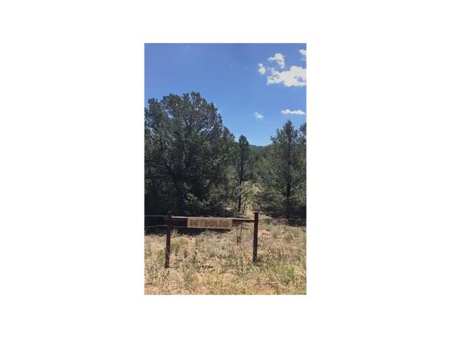0 County Road 29, Cotopaxi, CO 81223 (MLS #2575181) :: 8z Real Estate