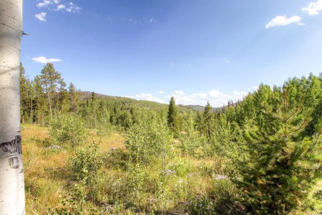 144 County Road 412, Granby, CO 80446 (#2577130) :: The DeGrood Team