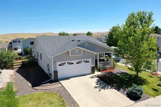 7712 Brown Bear Way, Littleton, CO 80125 (MLS #2584229) :: Neuhaus Real Estate, Inc.
