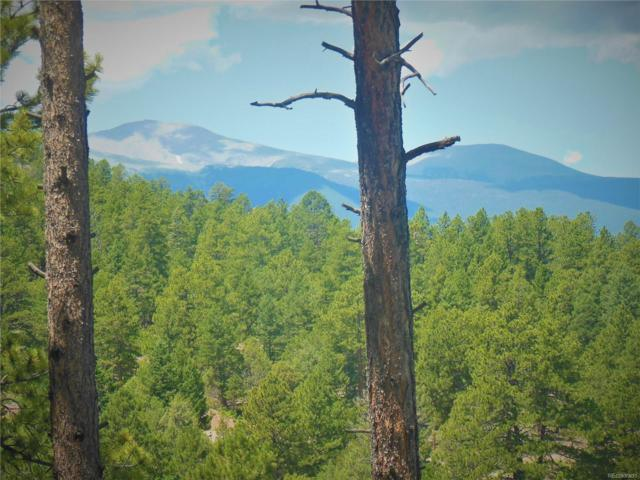 000 Wild Turkey Court, Westcliffe, CO 81252 (#2591349) :: Bring Home Denver
