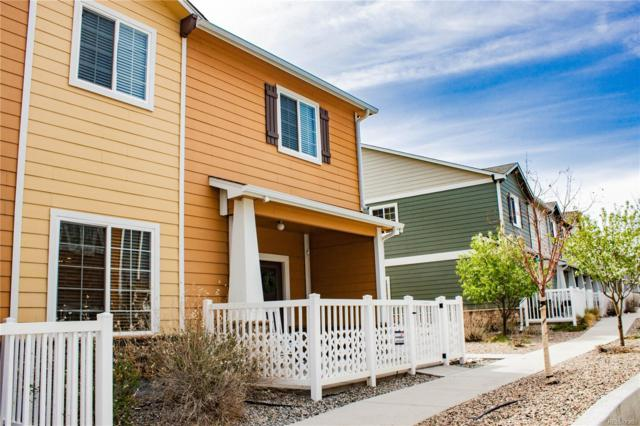 3082 Shikra View, Colorado Springs, CO 80916 (#2605420) :: The City and Mountains Group