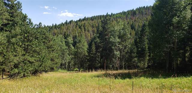 00 Indian Springs Road, Conifer, CO 80433 (MLS #2612202) :: Bliss Realty Group