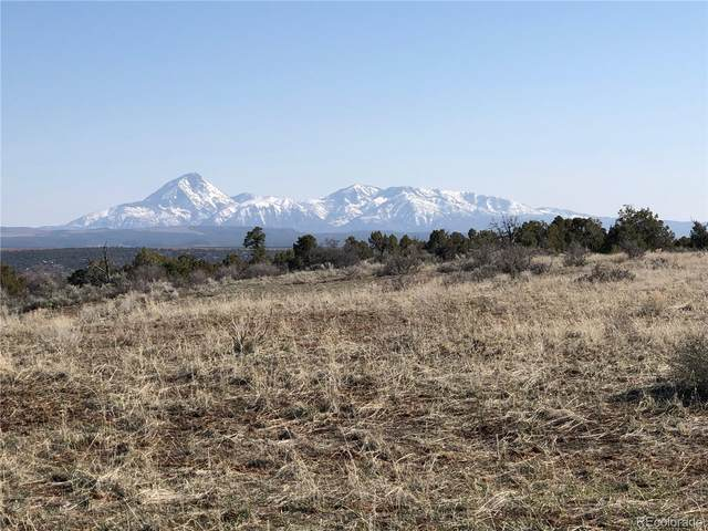 11220 Road Z, Pleasant View, CO 81331 (#2651405) :: The Gilbert Group