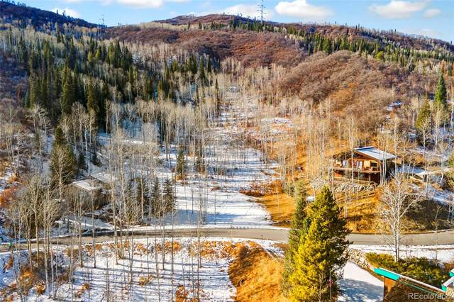 36867 Tree Haus Drive, Steamboat Springs, CO 80487 (#2658857) :: The Brokerage Group