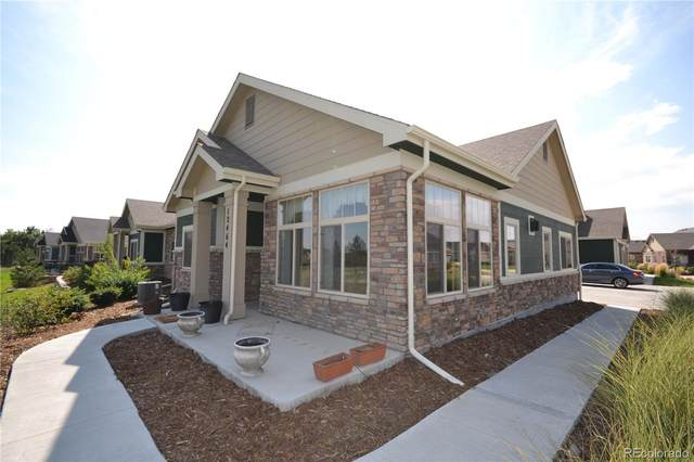 12464 Madison Way, Thornton, CO 80241 (#2661830) :: The Scott Futa Home Team