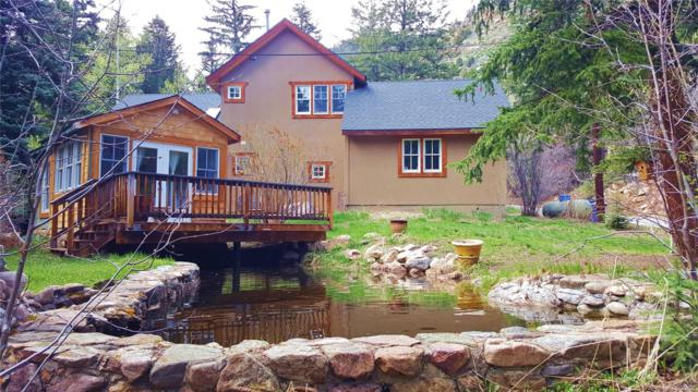 1021 Mill Creek Road, Dumont, CO 80436 (#2665721) :: The Galo Garrido Group