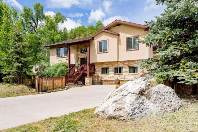 209 River Road, Steamboat Springs, CO 80487 (#2689266) :: My Home Team